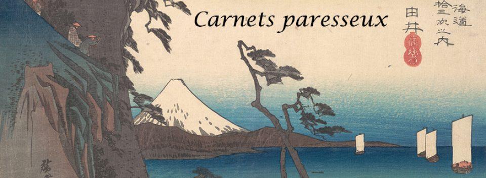 Carnets Paresseux