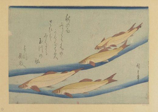 [____]________Ayu___[...]Utagawa_Hiroshige_btv1b105093203_1